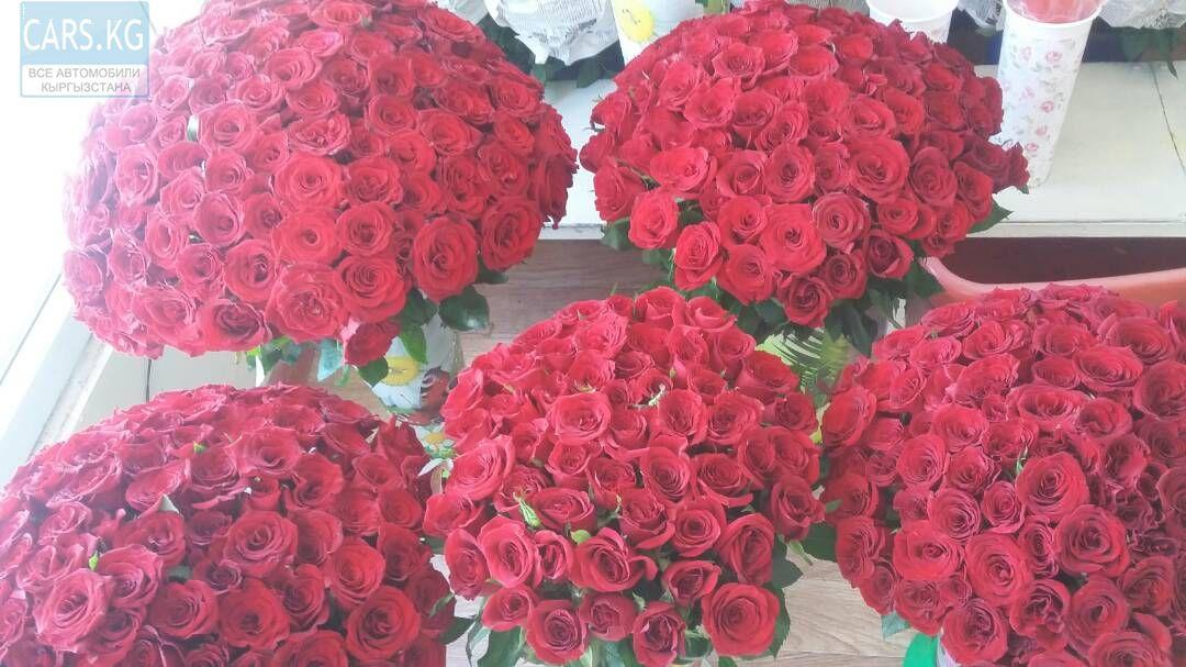 Букетов орхидеи, цветы розы купить дешево тюмени
